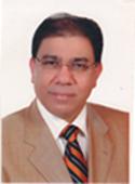 Moustafa el Sayed1